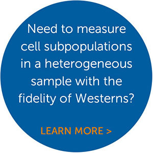 Single-Cell Western