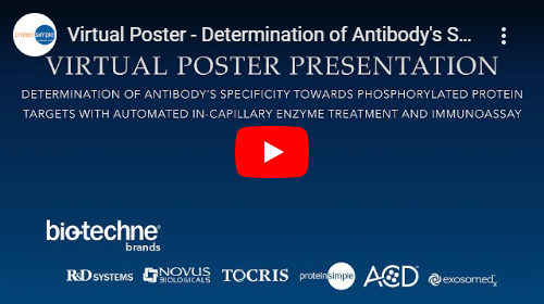 Virtual Poster Presentation on Determining Antibody Specificity Towards Phosphorylated Protein Targets with Automated In-capillary Enzyme Treatment and Immunoassay