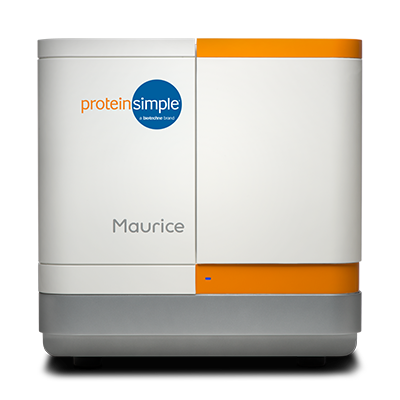 Maurice - Automated Capillary Electrophoresis from ProteinSimple