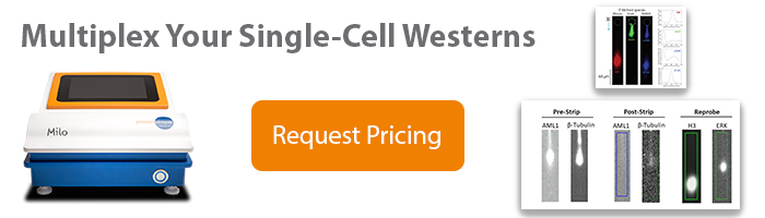 Multiplex Your Single-Cell Westerns