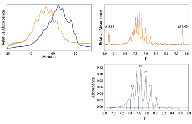 Analysis of Molecules with Complicated Charge Heterogeneity Profiles like Antibody Drug Conjugates (ADC) and Fusion Proteins is Easy with Maurice, The Automated Capillary Electrophoresis Instrument from ProteinSimple