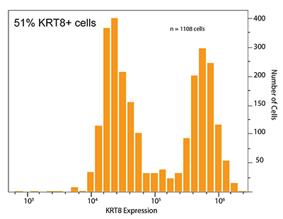 Milo chart - heterogeneity - 51% KRT8+ cells