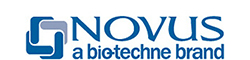 Novus Biologicals