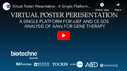 Virtual Poster Presentation on Adeno-associated viruses (AAV) are promising vectors for the delivery