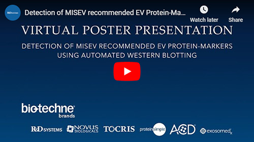 Virtual Poster Presentation on Detection of MISEV recommended EV Protein-Markers using Automated Western Blotting